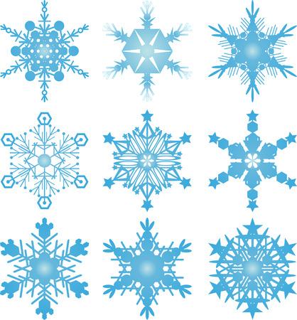 Snowflake vectors Vector