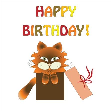cat in gift