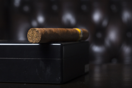 Cigar on its box with brow leather in background