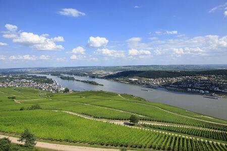 rudesheim: Vineyards of the Rhine River Valley Germany