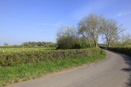 farmland: English country lane and farmland Stock Photo