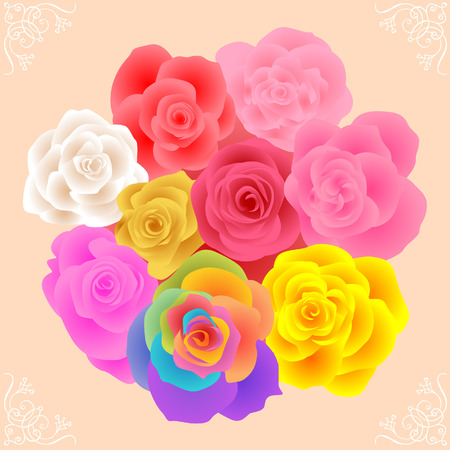 All Rose Flowers