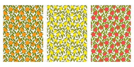Japanese Orange Tree, Yellow Lemon, Tomato Abstract Vector Background Collection 向量圖像