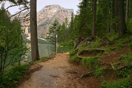 tyrol: Tranquil landscape in Tyrol