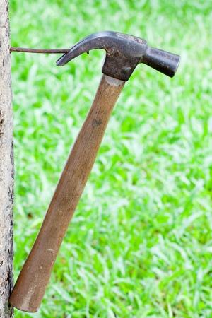 wooden hammer photo