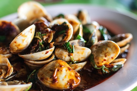 food of shell of thailand Stock Photo - 20618593