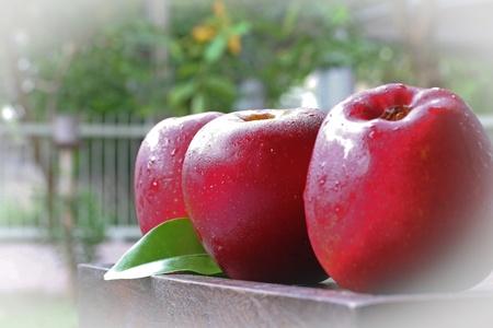 Three apples on the wood photo