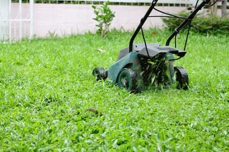 Mower esecuzione in erba
