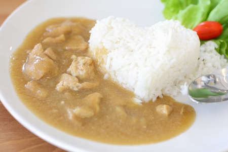 Rice with Curry Chicken Stock Photo - 21133493