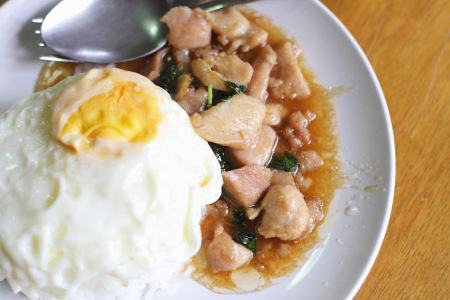 Basil chicken and fried rice Stock Photo - 21133526