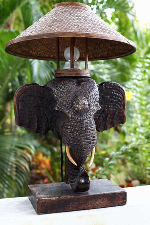 elephant with electric light photo
