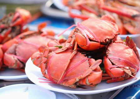 Many red crabs for sale on market photo