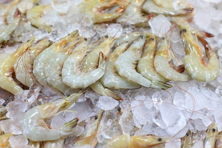 Shrimp frozen in ice for sale