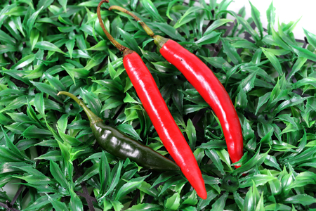 Peppers on the green grass photo