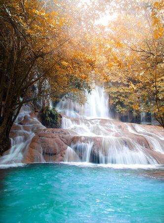Bellissima cascata nella foresta Archivio Fotografico