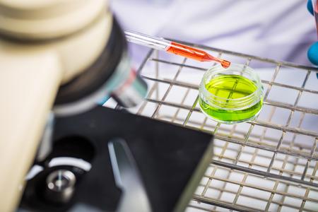 Mani di strumenti di partecipazione clinico durante l'esperimento scientifico in laboratorio Archivio Fotografico