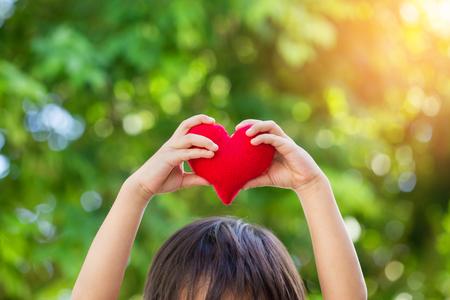 Red heart in boy hands, on green bokeh background Stockfoto