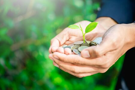 Business man holding little tree growing on money,Money growing and saving with a man holding coin Reklamní fotografie