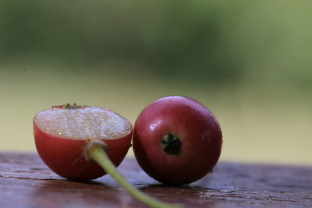 Close up the red jamaican fruits on wood ground and green background Stock Photo