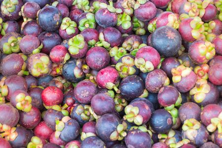 Many mangosteen mounds are gathered on the stall. Imagens