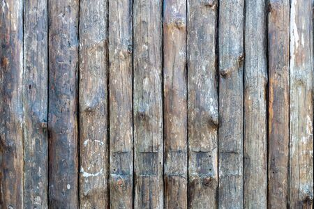 Wood texture background. View of vintage wooden door with cracks. Light brown surface of old knotted wood with natural color, texture and pattern. Texture banner with Space for text