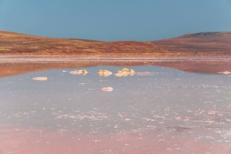 Brine and salt of a pink lake Koyash colored by microalgae Dunaliella salina, famous for its antioxidant properties, enriching water by beta-carotene, used in medicine and spa. cape Opuk, Kerch Crimea