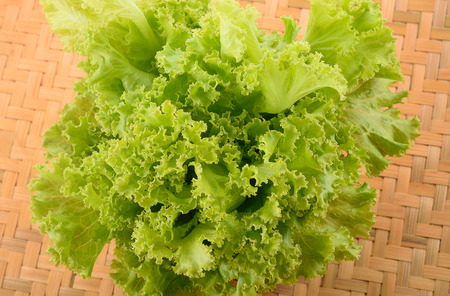 potherb: lettuce leaves