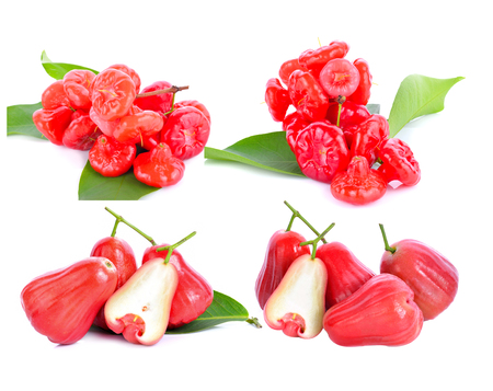 Rose apple isolted on white background Foto de archivo