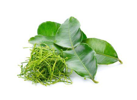 Kaffir lime leaves isolated on white background.