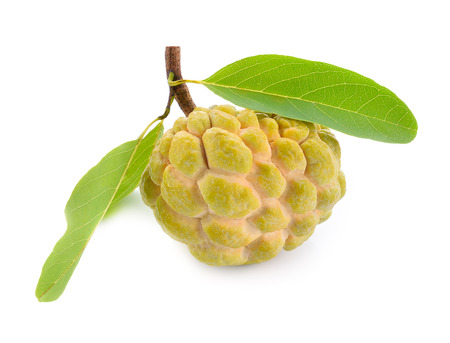 custard apple tropical fruit on a white background