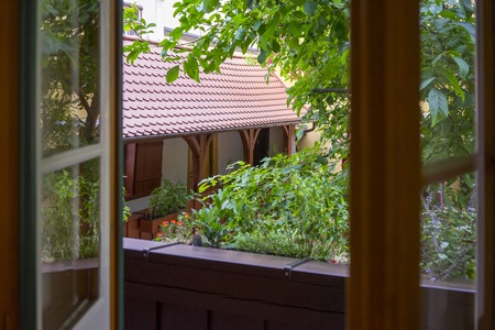 View from the window in a garden Stok Fotoğraf