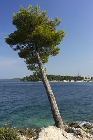 Beautiful sea view near a city Rovinj in Croatia