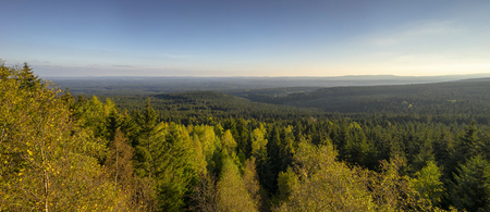 View over the Harz in Germany