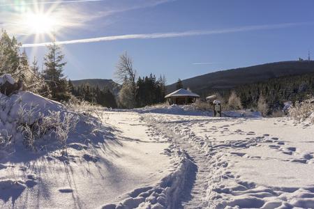 Winter Harz National Park, Germany Stok Fotoğraf