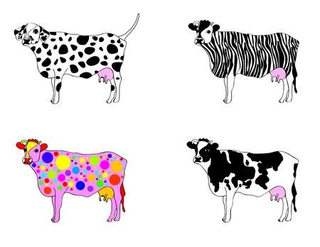dalmata: set di vacche in apparenza diverse, mutati in vacca dalmata, zebra mucca e mucca partito