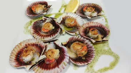 Galician style queen scallop dish, classic spanish dish