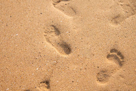 Baby foots steps in the beach sand Banco de Imagens