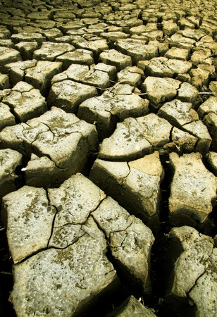 The crack ground at a rice field in Thailand. Stock Photo - 7512002