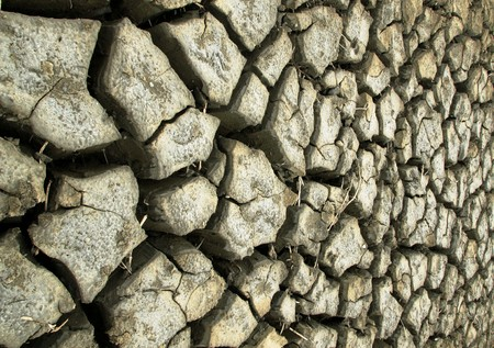 The crack ground at a rice field in Thailand. Stock Photo - 7530402
