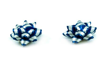 The couple of  blue silverstripe  ribbon on white background