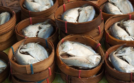 group of mackerel in local fresh market,thailand