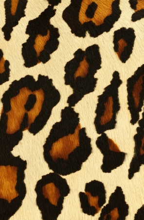 fake leopard skin that made from leather photo