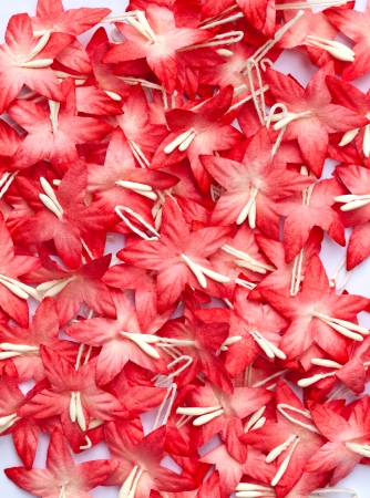 group of red handicraft paper flower