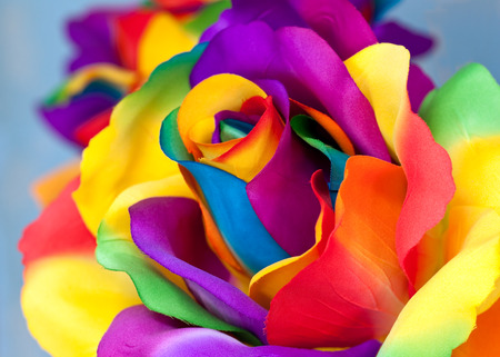 fake colorful rose as handicraft flower Stock Photo