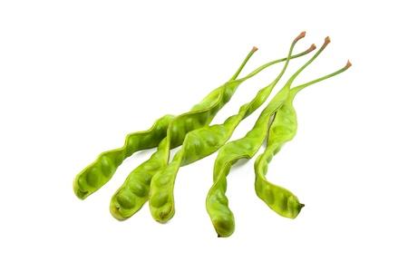 Fresh petai beans on white background Stock Photo - 15935987