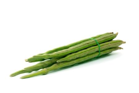 oleifera: Manojo de Moringa oleifera o sonjna sobre fondo blanco Foto de archivo