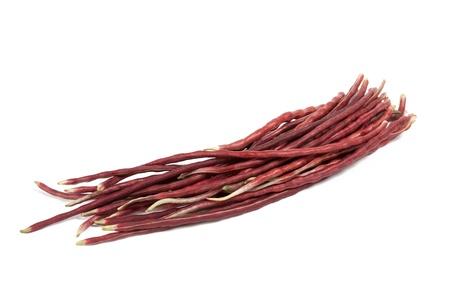 purple yardlong bean isolated on white background Stock Photo - 17370339