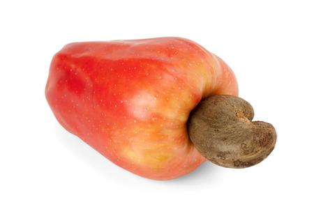 Fresh ripe Brazilian Caju Cashew fruit with path