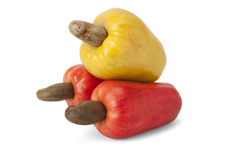 Fresh ripe Brazilian Caju Cashew fruit photo