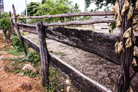 filming point of view: Wooden fence of rural residents engaged in a desert in Asia .